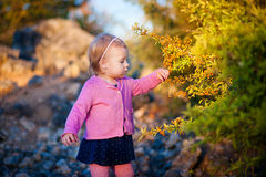 Liten flicka i orange bär för en rosa omslagshandlagpenna på busken Arkivbild