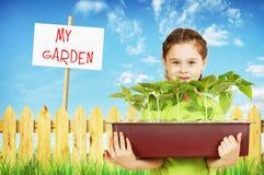 Liten flicka med en ask av plantor i trädgården Royaltyfria Bilder