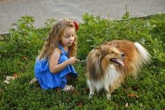 Liten flicka med en hund Sheltie royaltyfria bilder