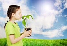 Liten flicka med en ny grön planta som är utomhus- i fältet Royaltyfri Bild