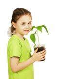 Liten flicka med en planta i krukan som isoleras över vit Royaltyfria Bilder