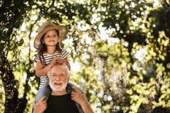 Liten flicka med gamala mannen som har gyckel i trädgård arkivbild