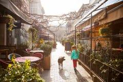 Liten flicka med hunden på den gamla Tbilisi gatan i Januari, Georgia royaltyfri fotografi