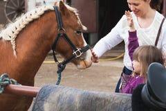 Liten flicka med modern och den bruna hästen royaltyfri bild