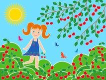 Liten flicka nära körsbärsrött träd i solig sommardag Royaltyfri Bild