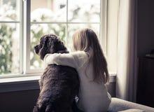 Liten flicka och hennes hund som ut ser fönstret. Arkivfoton