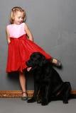 Liten flicka och hund i studion Arkivfoto