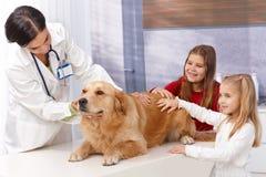 Liten flicka och hund på husdjur klinik