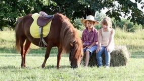 Liten flicka och pojke med ponnyhästen stock video