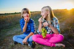 Liten flicka och pojke som äter utomhus- frukter sund näring för begrepp royaltyfri foto