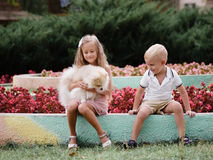 Liten flicka och pojke som spelar med en fluffig valp på en bakgrund för blommaträdgård Lycka- och öppenhetbegrepp Royaltyfri Foto
