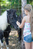 Liten flicka och ponny Royaltyfri Foto
