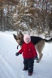 Liten flicka och utomhus- Multibred hund royaltyfri fotografi