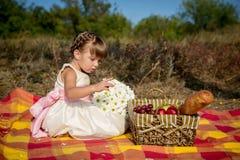 Liten flicka på en picknick Royaltyfria Bilder