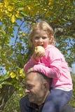 Liten flicka på faderskuldror som äter frukt Arkivfoton