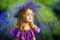 Liten flicka på lavendelfält Stående av en liten flicka i kran av blommor arkivbild