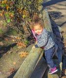 Liten flicka på staketet Royaltyfria Foton