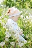 Flickan sitter i maskrosor Royaltyfri Bild