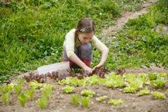 Liten flicka som arbetar i trädgården royaltyfri bild