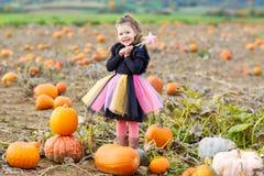 Liten flicka som bär halloween den felika dräkten på pumpalapp Fotografering för Bildbyråer
