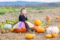 Liten flicka som bär halloween den felika dräkten på pumpalapp Royaltyfri Fotografi