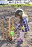 Liten flicka som bevattnar det nyligen planterade trädet Arkivfoto