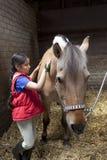 Liten flicka som borstar henne favorit- häst royaltyfria foton