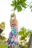 Liten flicka som försöker att få en pomello från trädet royaltyfri foto