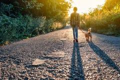 Liten flicka som går med hennes hund på vägen royaltyfri foto