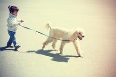 Liten flicka som går med hunden arkivfoto
