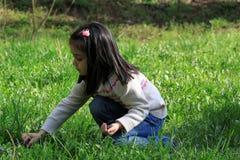 Liten flicka som gör en bukett av violets Fotografering för Bildbyråer