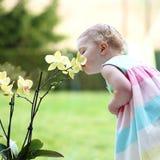 Liten flicka som luktar härliga blommor royaltyfri foto
