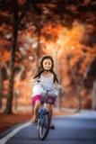 Liten flicka som rider en cykel i parkera Arkivbilder