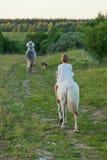 Liten flicka som rider en häst Royaltyfri Bild