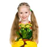 Liten flicka som rymmer en växt Arkivbilder