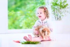 Liten flicka som spelar med en kanin Arkivfoto