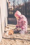 Liten flicka som spelar med hennes katt Royaltyfria Bilder