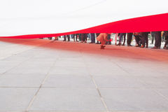 Liten flicka som spelar under en enorm flagga Royaltyfria Foton