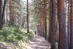 Liten flicka som tillbaka ser bredvid en kvinna som nära fotvandrar på en bana i skog till Madrid fotografering för bildbyråer