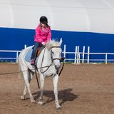Liten flickaritter en häst, fyrkantigt foto arkivbilder