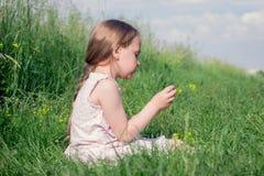 Liten flickasammanträde i blommor för ängfältplockning Arkivbild