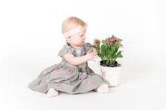 Liten flickasammanträde i grå färgklänning Royaltyfri Foto