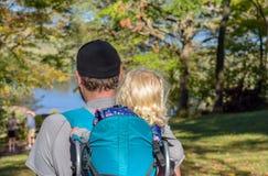 Liten flickasammanträde i ryggsäck på farsor drar tillbaka att fotvandra i träsläp royaltyfri foto