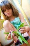 Liten flickaträdgårdsmästare Royaltyfri Foto