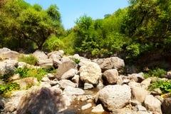 liten flod Arkivfoto
