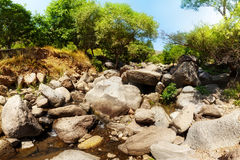 liten flod Royaltyfri Foto