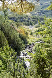 liten flod i det Pirin berget, Bulgarien arkivbild