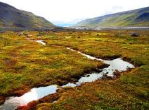 Liten flod i Island som reflekterar den sena solen arkivbild
