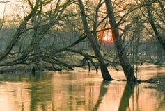 Liten flod i vår. Arkivbild