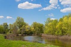 Liten flod med en nivå för högt vatten på en solig dag Arkivfoton